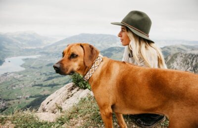 Find the Smartest Hiking Adventures with Your Dogs