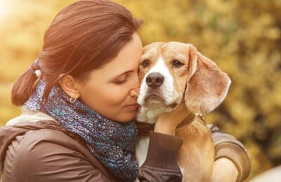 Steps To Take After A Pet Cancer Diagnosis
